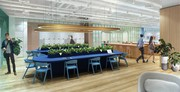 Brand New Coworking and Office Desk Rentals,  Entire Rooms or Meeting R
